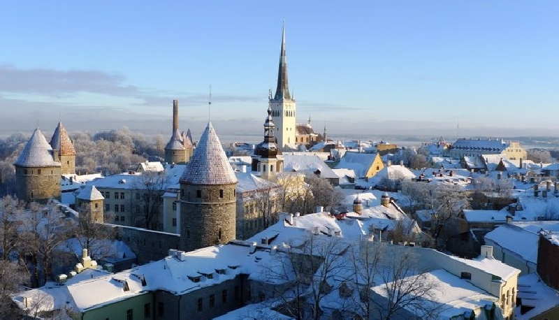 Image for ECFR Commentary by Kristi Raik: Estonia's Cold Conservative Spring